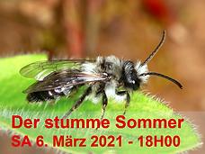 Der Stumme Sommer.png