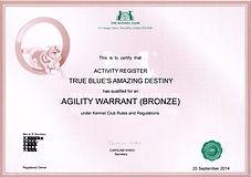 Mazy AW Bronze web.jpg