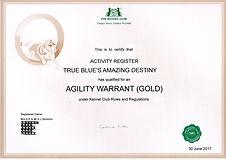 Mazy AW Gold web.jpg