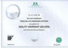 Mazy AW Silver web.jpg