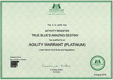 Mazy AW Platnium web.jpg