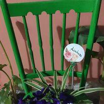 silla verde.jpg