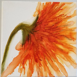 Orange side burst.jpg