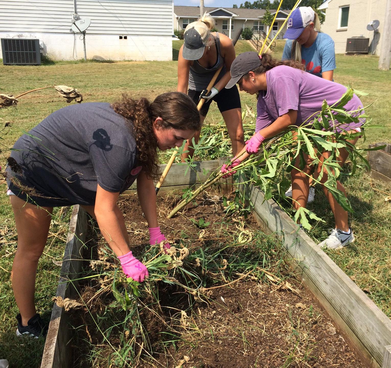 Volunteers Working Community Garden