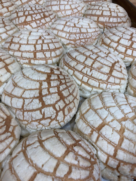conchas on pan picture.jpeg