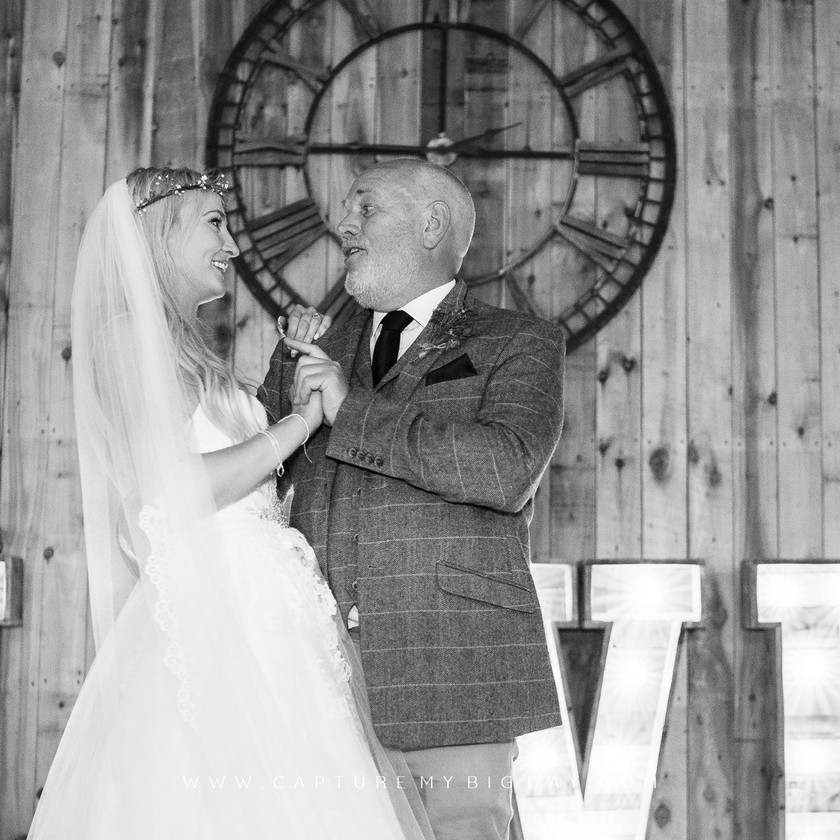 father with the bride