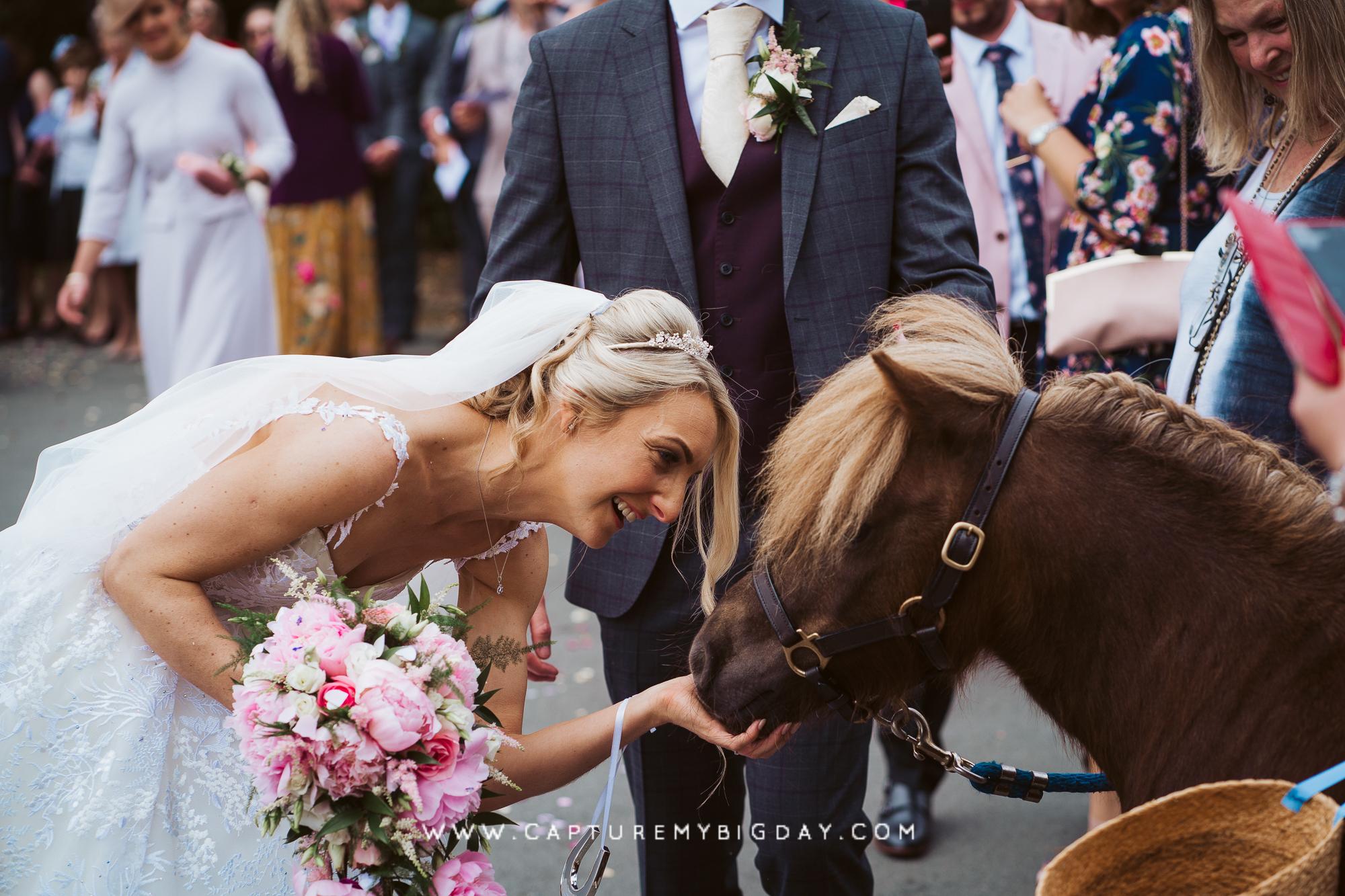 bride with pony
