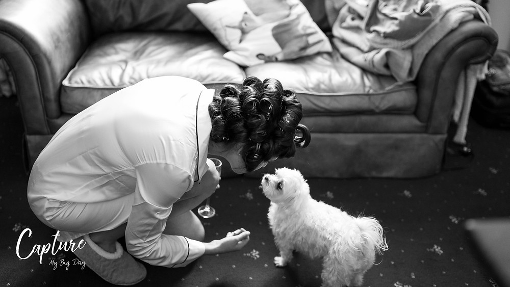 Bride getting ready with her dog
