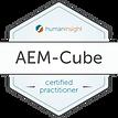 AEM Badge certified.png