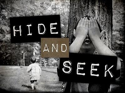 Hide_and_Seek.jpg
