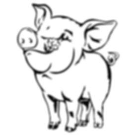 pigs tail1.jpg