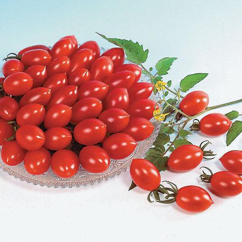 Sugary Grape Tomato (Pre-Order Discount)