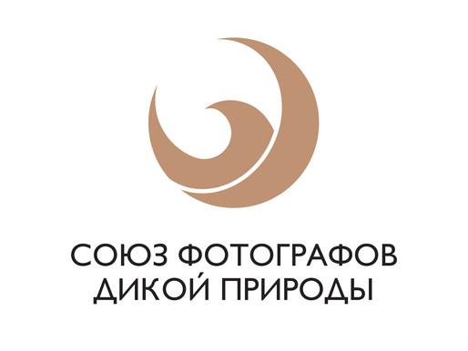 Появилась страница с официальным логотипом СФДП