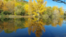 Autumn is my favourite color Presen.jpg