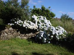 Galicia 10