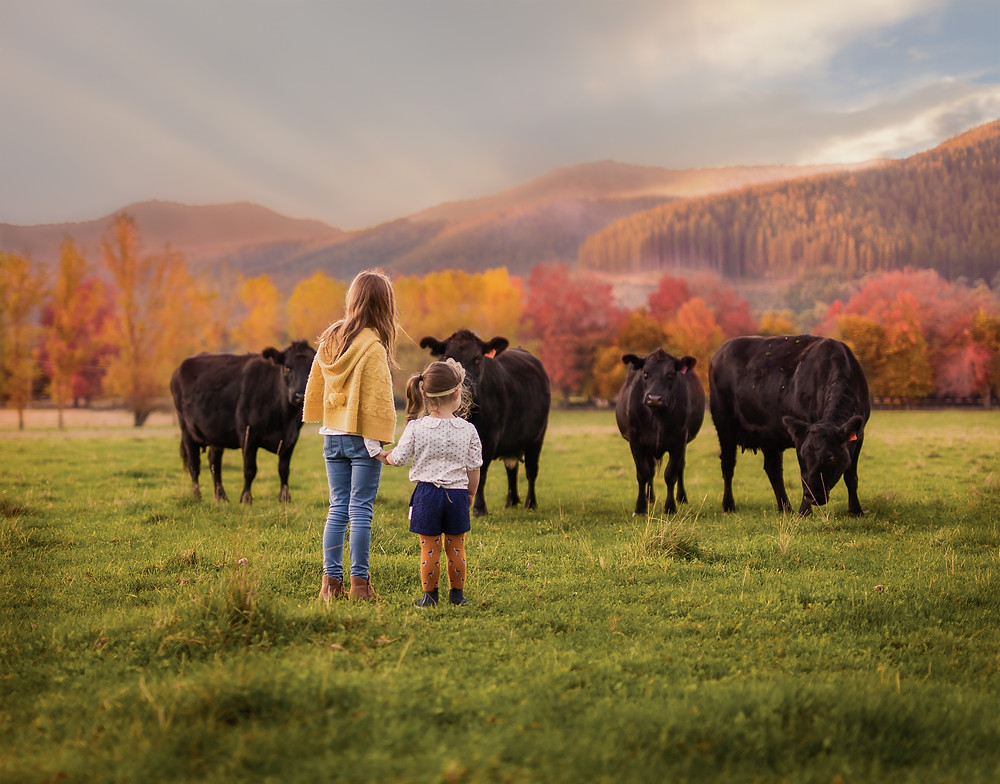 Two little girls in a field with some friendly cows