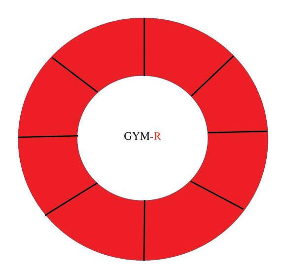 GYM-R Model Blank copy.jpg