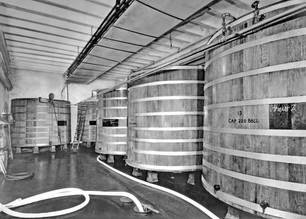 Fermentation Cellar, Bavarian Brewing Co., Covington, KY
