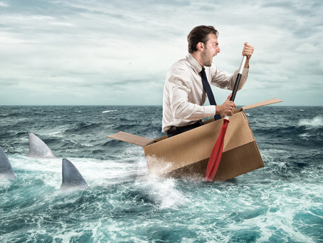 5 Major Reasons Why Startup Companies Can't Survive!