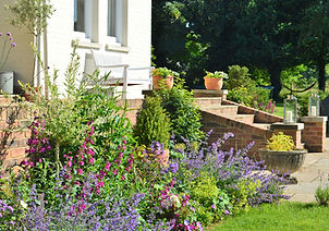 steps, garden, flowers, wildflowers, flower bed