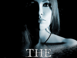 The Beginning (Book 5 - The C I N Series)