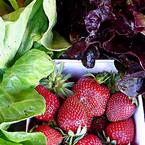 salat-erdbeere_emo_de.jpg