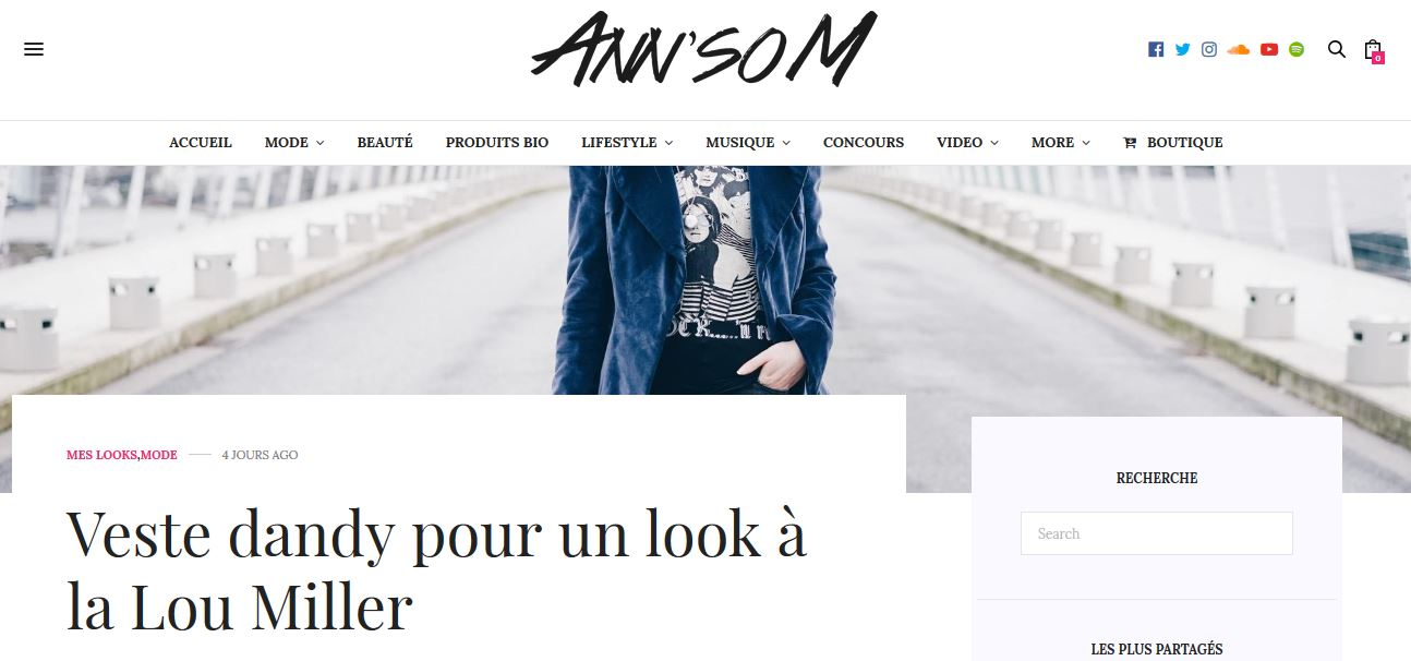 Article de la Blogueuse Ann'soM