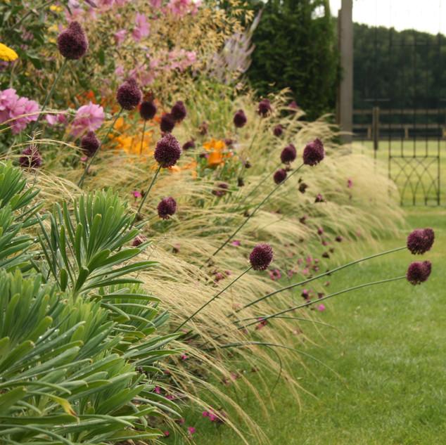 'A garden within a garden'
