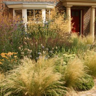 A sun-baked gravel garden