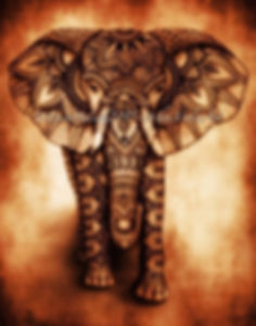 Elephant2017.jpg