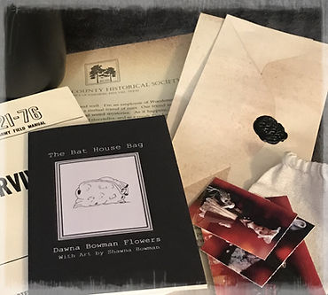 The Hallock House Mystery, The Bat House Bag, Mysterious Horrors Collection, Adventure Packages with treasures, trinkets, survival gear, 1070's, historical documents, books, old newspapers, paranormal, occult, Monster, Killer, Slenderman, from bestselling author, Dawna Flowers, and artist, Shawna Bowman.