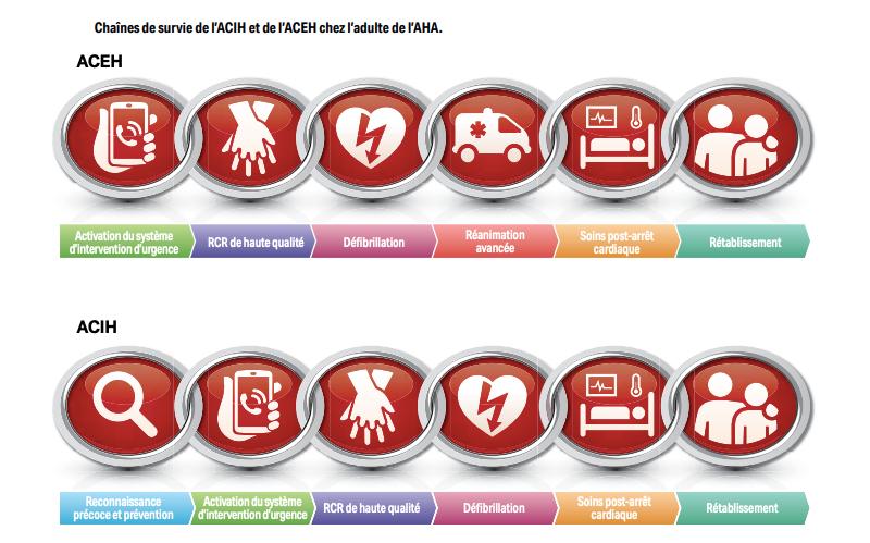 Chaînes de survie de l'American Heart Association 2020 pour l'IHCA et l'OHCA.  La RCP indique une réanimation cardio-pulmonaire; IHCA, arrêt cardiaque à l'hôpital;  OHCA, arrêt cardiaque hors de l'hôpital.