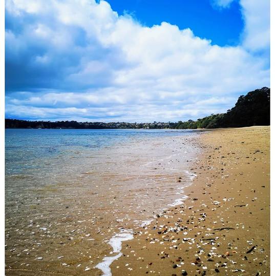 Seashore Shells.jpg