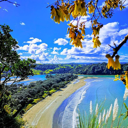 Kowhai Coast