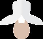 KS_Web_2020_Wix_PortfolioDesign_Branding