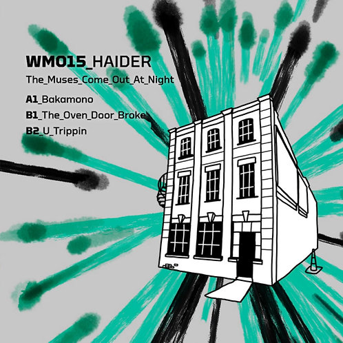 Haider 'The Muses Come Out At Night' (Warehouse Music)