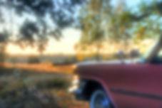 DSC_1609_10_11_tg.jpg