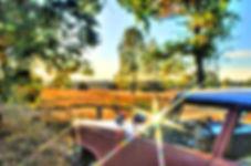 DSC_1726_7_8_tg.jpg