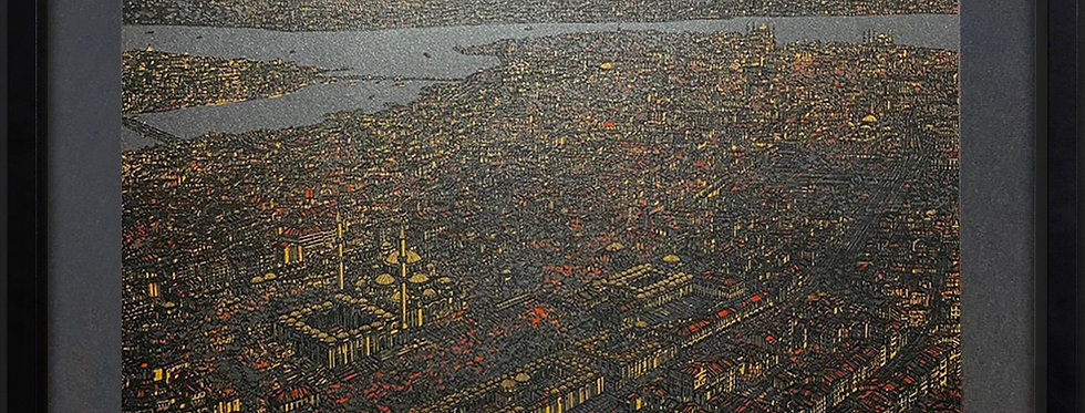 Devrim Erbil    İstanbul'u İzlemek