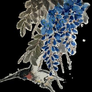 Westeria and bird