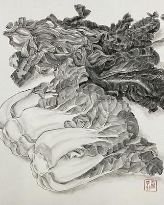 Precious Food - Dried & Fresh Pak Choi