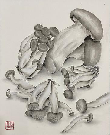 Precious Food - Mushrooms