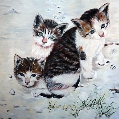 Cat-spring snow.jpg