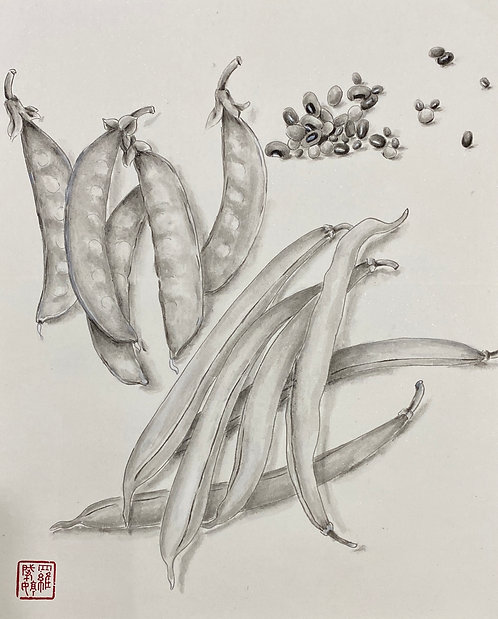 Precious Food - Beans 珍食-豆豆
