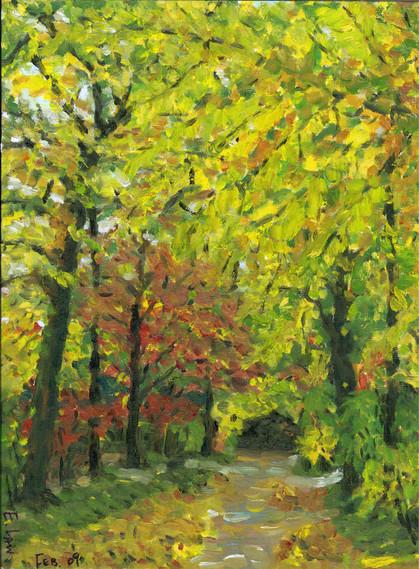 Autumn Leaf, Germany 秋葉 - 德國花園