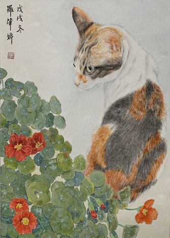 One Cat 貓 - FeiFei