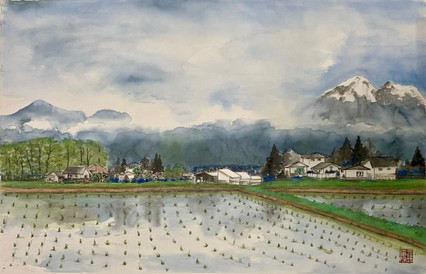 Sprout Field, Janpan 春禾秋收