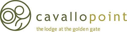 CAV_logo.jpg
