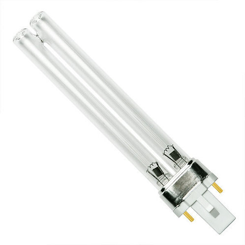 Square Style Bulbs - CASE