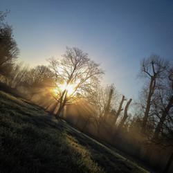 Beddington Park, Sutton